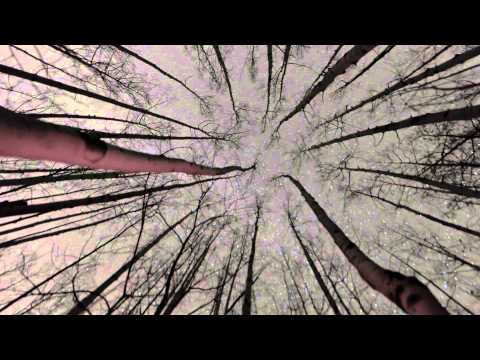 A video for Isha Erskine Project – Falling Down