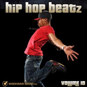 Hip Hop Beatz, Vol. 10