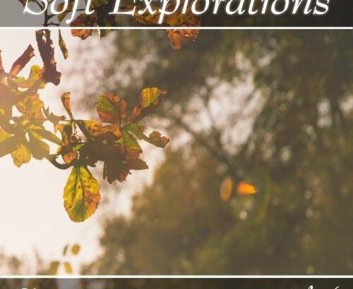Music collection: Soft Explorations, Vol. 6