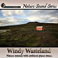 Windy Wasteland - nature sounds only version