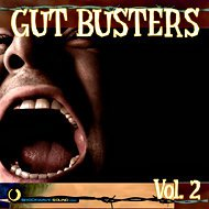 Music collection: Gut Busters Vol. 2