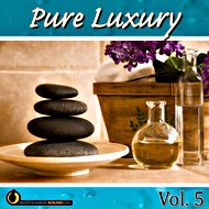 Music collection: Pure Luxury Vol. 5