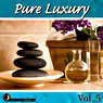 Pure Luxury Vol. 5 Picture