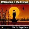 Relaxation & Meditation Vol. 5: Yoga Focus Picture