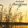 Ambient Americana, Vol. 2 Picture