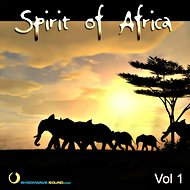 Music Collection: Spirit of Africa, Vol. 1