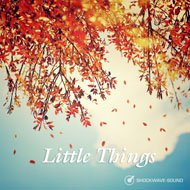 Music collection: Little Things