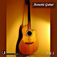 Music collection: Acoustic Guitar Vol 1