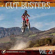Music collection: Gut Busters Vol. 21